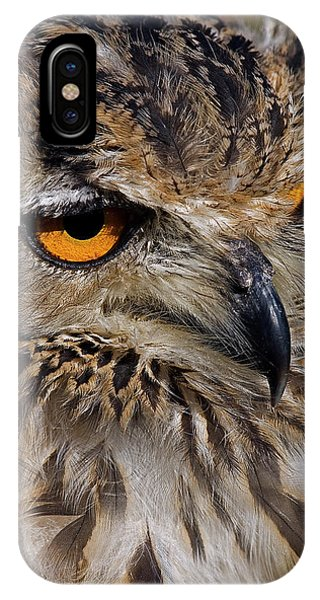 Bengal Eagle Owl IPhone Case