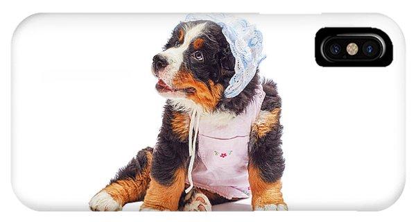Bernese Mountain Dog iPhone Case - Bernese Mountain Dog Puppy by Aleksey Tugolukov