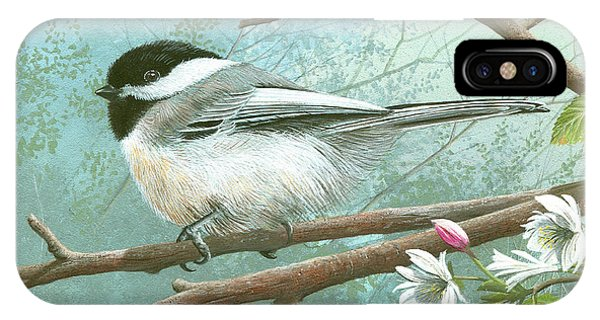 Black Cap Chickadee IPhone Case