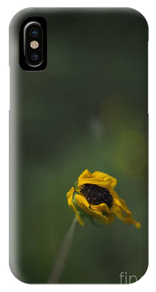 iPhone Case - Blowing by Margie Hurwich