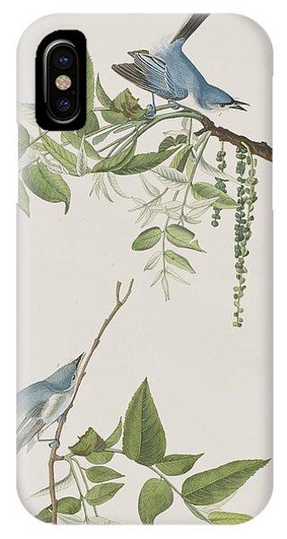 Flycatcher iPhone Case - Blue Grey Flycatcher by John James Audubon