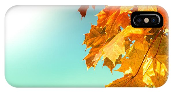 Yellow Autumn White Sun IPhone Case
