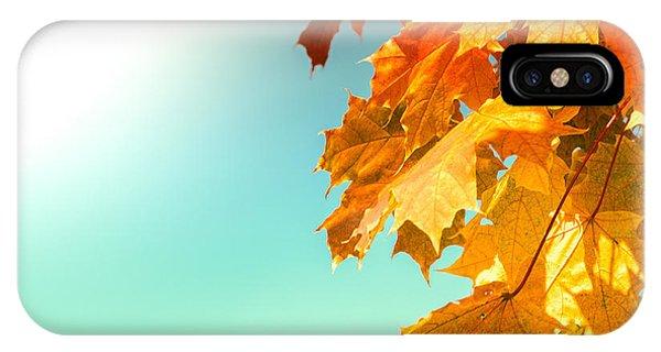 Yellow Autumn White Sun IPhone Case