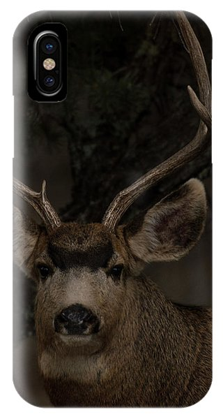 Buck IPhone Case
