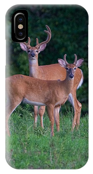 White Tailed Deer iPhone Case - Buck Father And Son by William Jobes