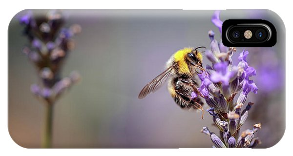 Scent iPhone Case - Bumblebee And Lavender by Nailia Schwarz