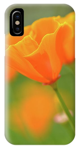 California Spring Poppy Macro Close Up IPhone Case