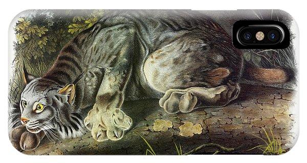 Lynx iPhone Case - Canada Lynx by John James Audubon