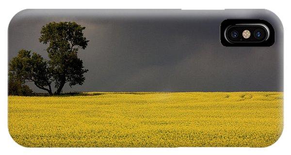Canola Storm IPhone Case