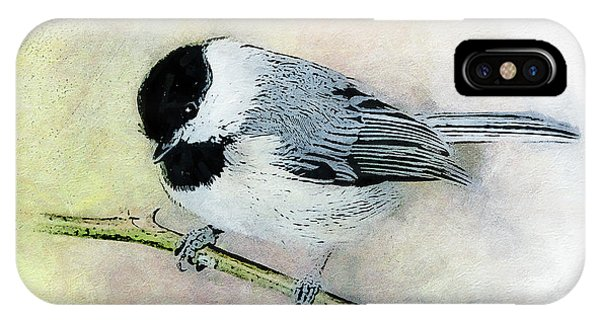 Carolina Chickadee IPhone Case