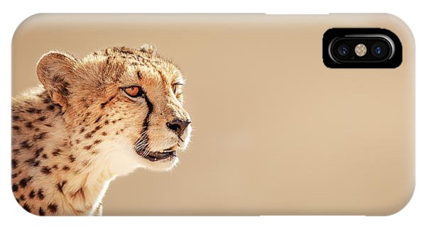 Cheetah Portrait IPhone Case