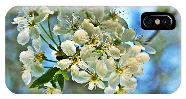 Cherry Tree Flowers IPhone Case