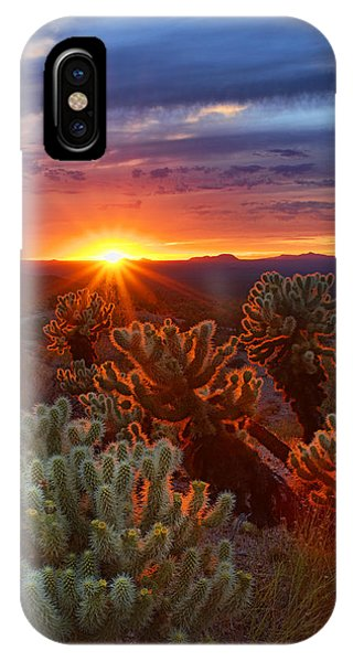 Cholla Sunset  IPhone Case