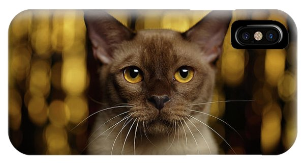 Cat iPhone X Case - Closeup Portrait Burmese Cat On Happy New Year Background by Sergey Taran