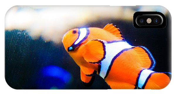 Clownfish Phone Case by Brenton Woodruff
