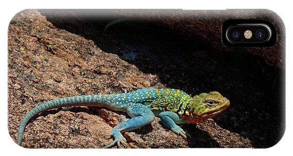 Colorful Lizard II IPhone Case