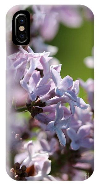 iPhone Case - Common Purple Lilac by J McCombie
