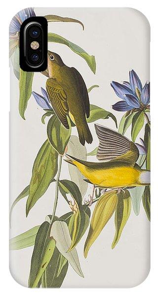 Warbler iPhone Case - Connecticut Warbler by John James Audubon