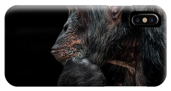 Chimpanzee iPhone Case - Contemplation  by Paul Neville