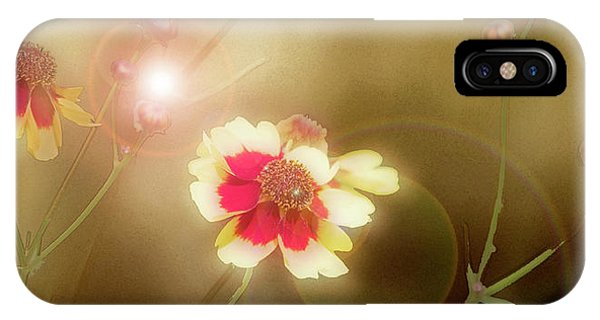 Coreopsis Flowers And Buds IPhone Case