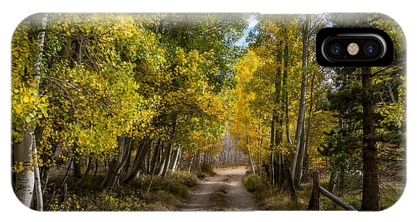 Sierra Nevada iPhone Case - Country Road by Cat Connor