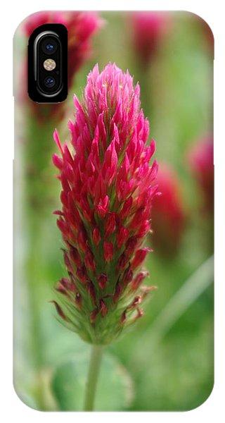 Crimson Clover IPhone Case