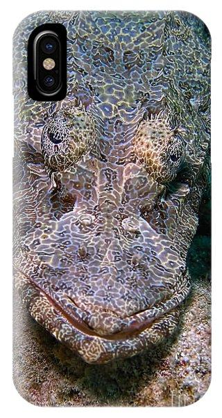 Crocodile Fish IPhone Case