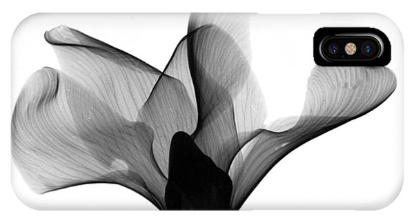 Cyclamen Flower X-ray IPhone Case