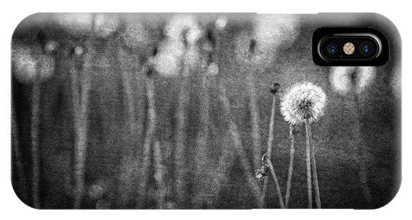 Dandelion Field IPhone Case