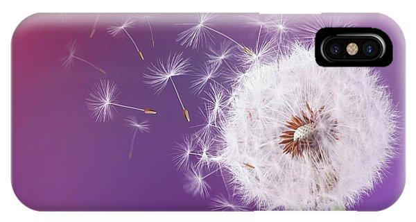 Dandelion Flying On Magenta Background IPhone Case