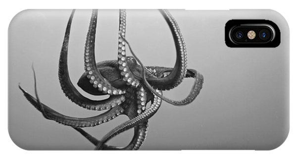 Day Octopus IPhone Case