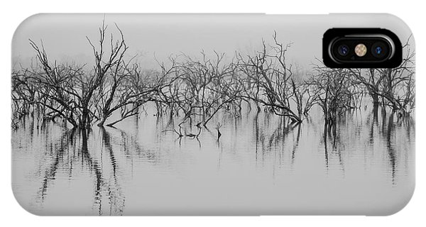 Dead Lake Reflections IPhone Case