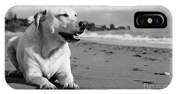 Dog - Monochrome 5  IPhone Case
