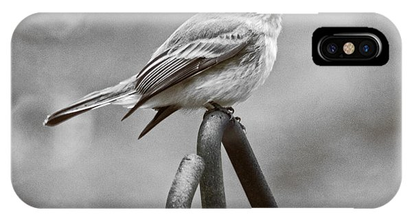 IPhone Case featuring the photograph Eastern Phoebe by Robert L Jackson