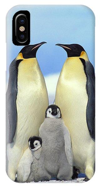 Mp iPhone Case - Emperor Penguin Aptenodytes Forsteri by Konrad Wothe