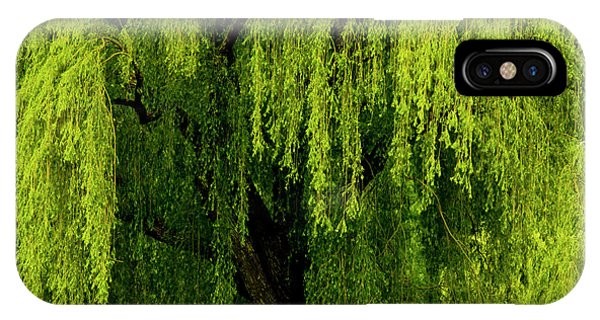 Enchanting Weeping Willow Tree  IPhone Case