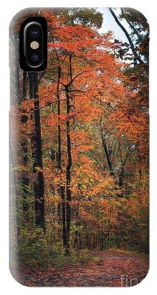 Fall In Arkansas IPhone Case