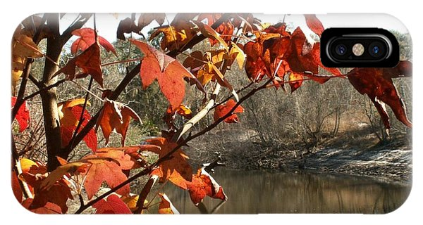 Fall On The Withlacoochee River IPhone Case