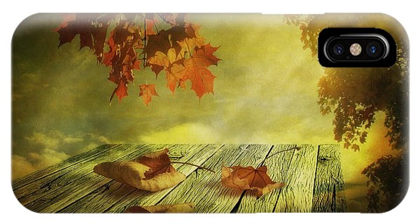 Leave iPhone Case - Fallen Leaves by Veikko Suikkanen