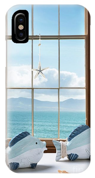 Window Pane iPhone Case - Fish In The Window by Amanda Elwell