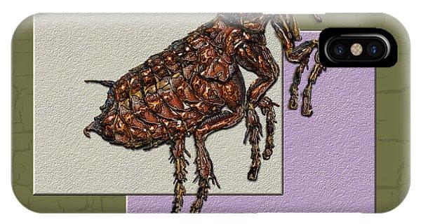 Artwork iPhone Case - Flea On Abstract Beige Lavender And Dark Khaki by Serge Averbukh