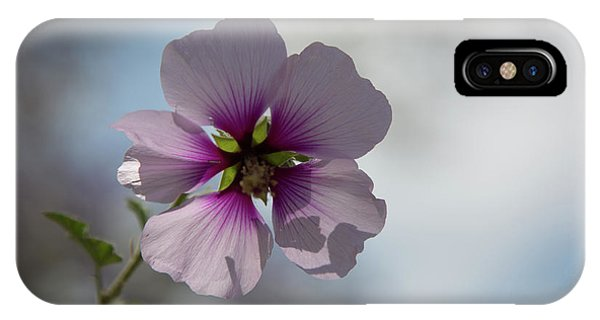 Flower In Focus IPhone Case