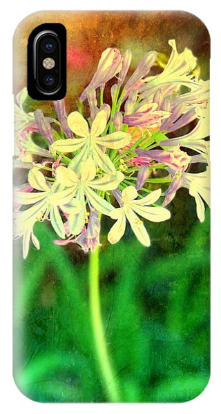 iPhone Case - Flower Power by Debbi Granruth