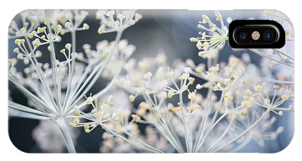 IPhone Case featuring the photograph Flowering Dill by Elena Elisseeva