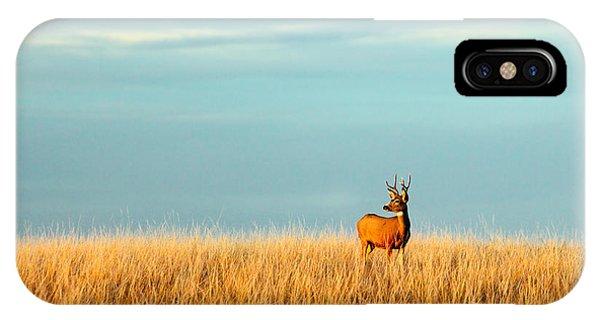 Mule Deer iPhone Case - Fort Peck Buck by Todd Klassy
