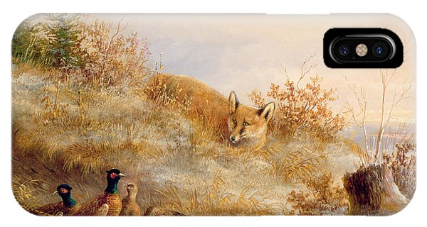Pheasant iPhone Case - Fox And Pheasants In Winter by Anonymous