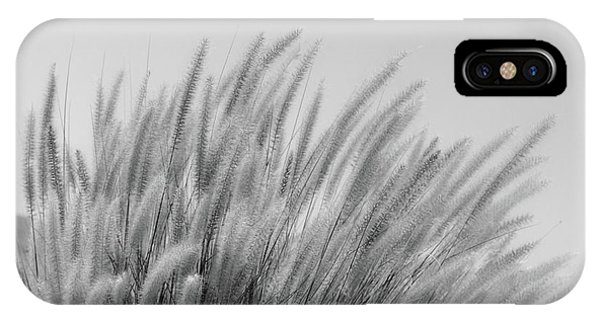 Foxtails On A Hill In Black And White IPhone Case
