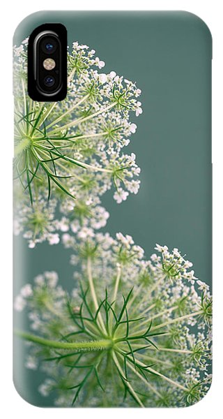 Blooming iPhone Case - Fragile Dill Umbels On Summer Meadow by Nailia Schwarz