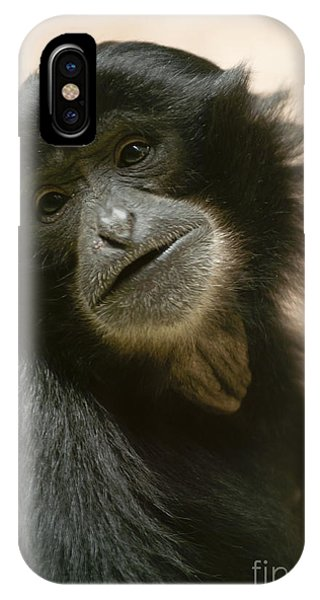 Funky Gibbon IPhone Case