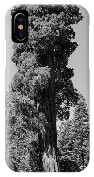 Giant Sequoia, Sequoia Np, Ca IPhone Case